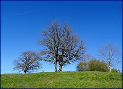 Un trait infime pour souligner le bleu du ciel...