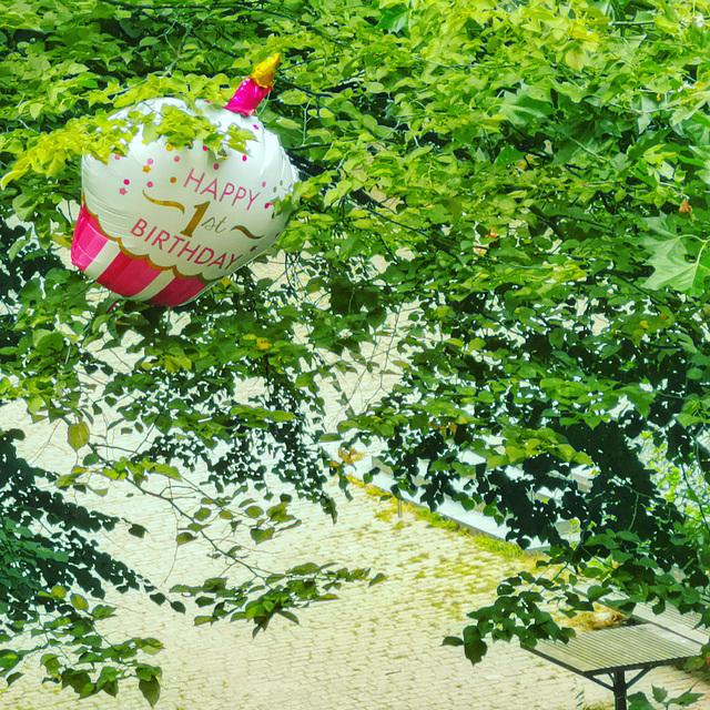 """Umweltverschmutzung"" im Baum"
