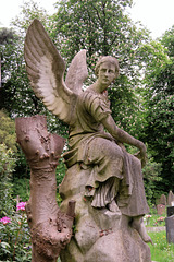 st pancras and islington cemetery, east finchley , london