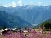 un saluto dalla Val d'Ayas