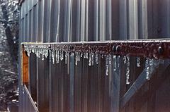 Ice Ice (Baby)