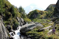 entlang des Bergbaches vom Rötkreuz zur Rötalm