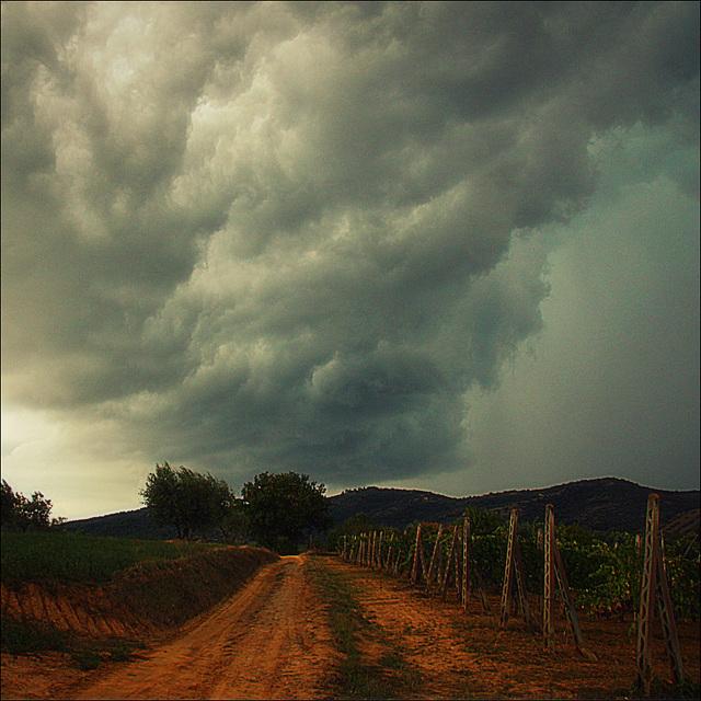 Stormy autumn day.