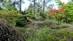 Arborétum des Grandes Bruyères...