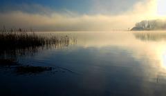 Das Bootshaus im Morgennebel