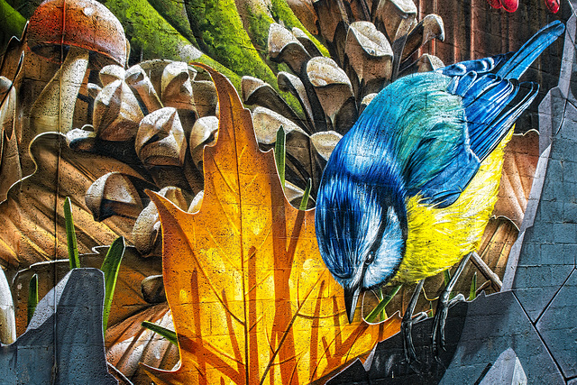 Blue Tit, Mural