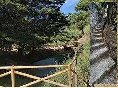 Castanhal Trail