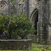Évora, Basilica Sé, Claustro