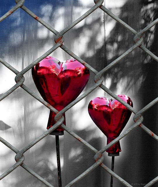 behind bars :-(