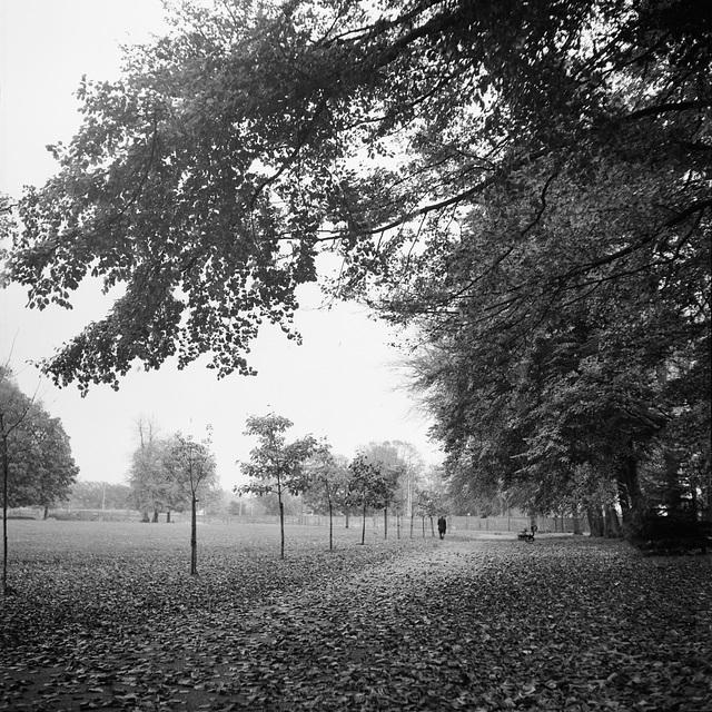 The War Memorial Park, Basingstoke - 1978