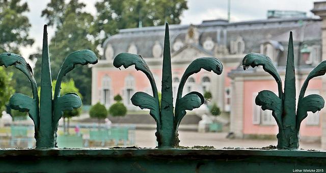 Schloss Benrath - Am Zaun...