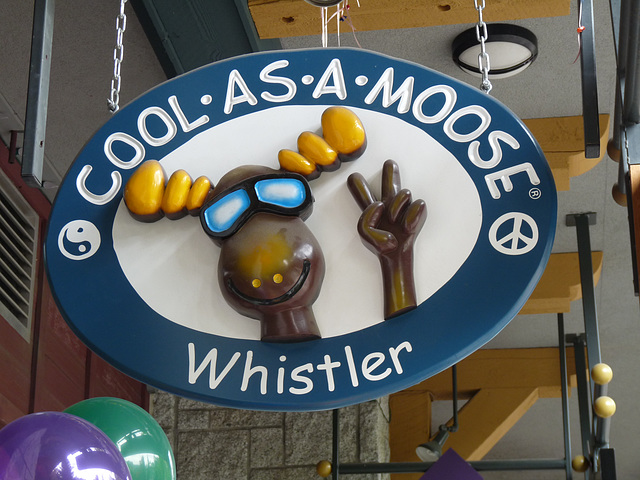 'Cool As A Moose'