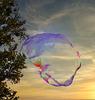 1 (45)...austria vienna street performer bubbles