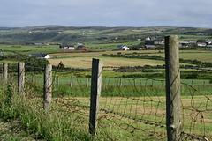 IMG 5364-001-Dunseverick Farms