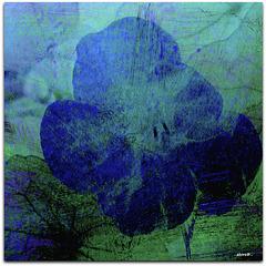...fantasy flower...
