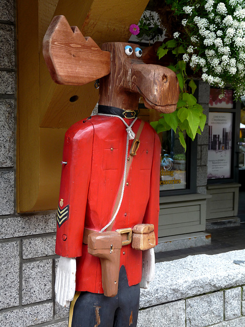 On Guard in Whistler