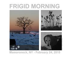 Frigid Morning