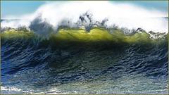 Nel mar ligure : Onda trasparente
