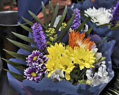 Floral Arrangement – Marché Jean-Talon, Montréal, Québec, Canada