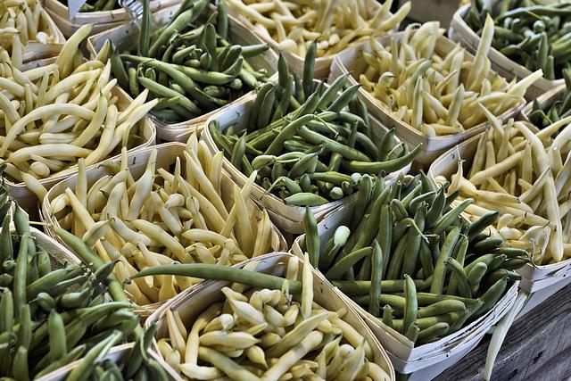 Beans for Sale – Marché Jean-Talon, Montréal, Québec, Canada