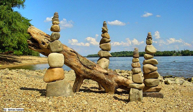 Driftwood art from Hungary by tamas kanya