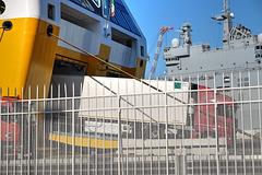 TOULON: Le port 12