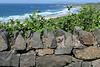 IMG 5379-001-Stone Wall