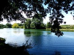Brives-sur-Charente - Charente