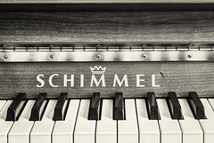 """""""Music hath charms... (PiP)"""