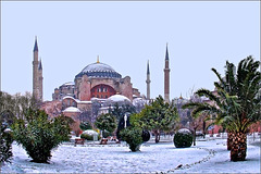 Hagia Sophia, palms and snow