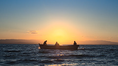 Three Men in the Boat