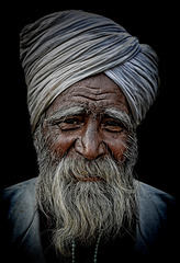 Portrait of an old sikh