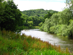 River Severn at Chestnut Coppice.