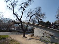 Puente Rakalamar en Santiago