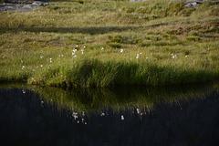 Norway, Lofoten Islands, The Reflection