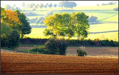 Autumn Land (3)