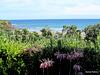 Opunake Sea View