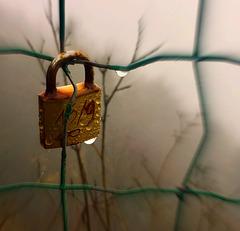 rusty dripping love (padlock)