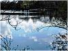 Reflets à l'étang de Bétineuc (22) avec notes