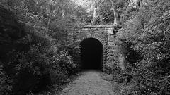 take the dark trail...