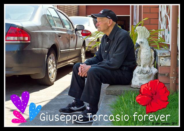 Giuseppe Torcasio: Image