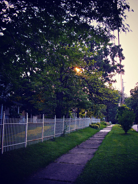 Sunrise Over the White Fence