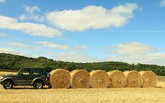 Une locomotive dans les champs de blé