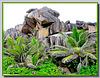 LA DIGUE, SEYCHELLES - i graniti esclusivi dell'isola