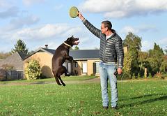 Lance ce frisbee correctement pour que je puisse l'atteindre !!!