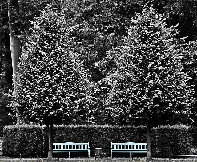 Schloss Benrath - Bänke im Jagdstern des Parks...