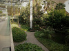 A wonderful inner garden for many lives at risk