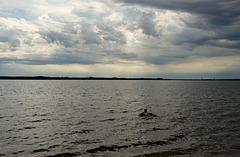 meine Frau schwimmt bei jedem Wetter