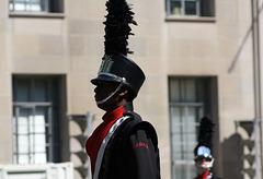 102a.NCBF.Parade.WDC.10April2010