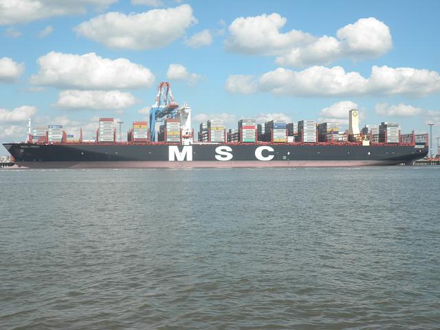 MSC INGY
